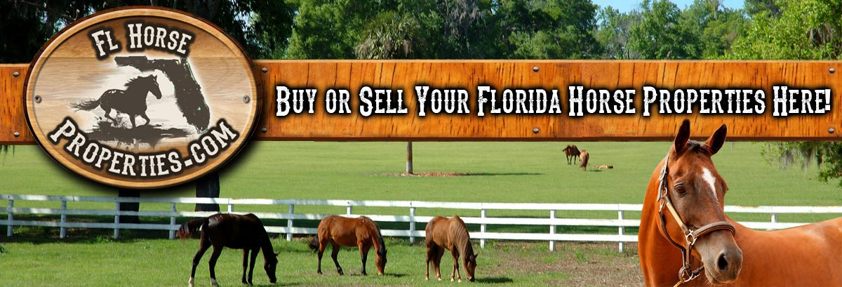 Buy Or Sell Your Florida Horse Properties Here!